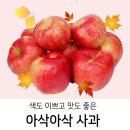 색도 맛도 좋은 아삭아삭~ 가정용 흠사과 (중 10kg)