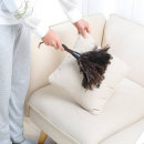 타조깃털 먼지떨이 먼지털이 타조깃털 네이쳐