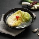 미스터홍주부 백김치 2kg 국내산 당일생산