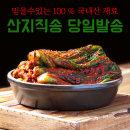 옹고집싱싱식품 돌산 갓김치 1kg 현지생산 당일발송