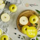 (장길영사과) 황금사과 시나노골드 알뜰 특대과 10kg(20-32과)