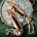 국내산(냉동비축품) 손질오징어(대) 1미x10팩1.7kg