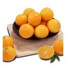고급 과일 선물세트 (제주 황금향) 추석선물 오렌지